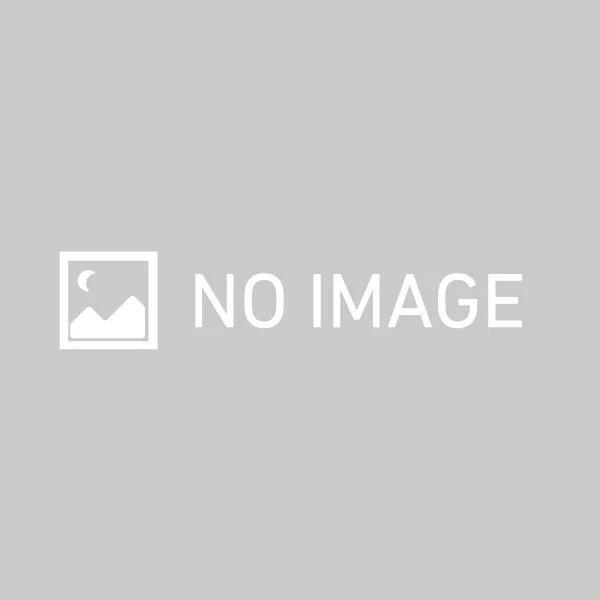 DEEBOT OZMO 750 DV6G